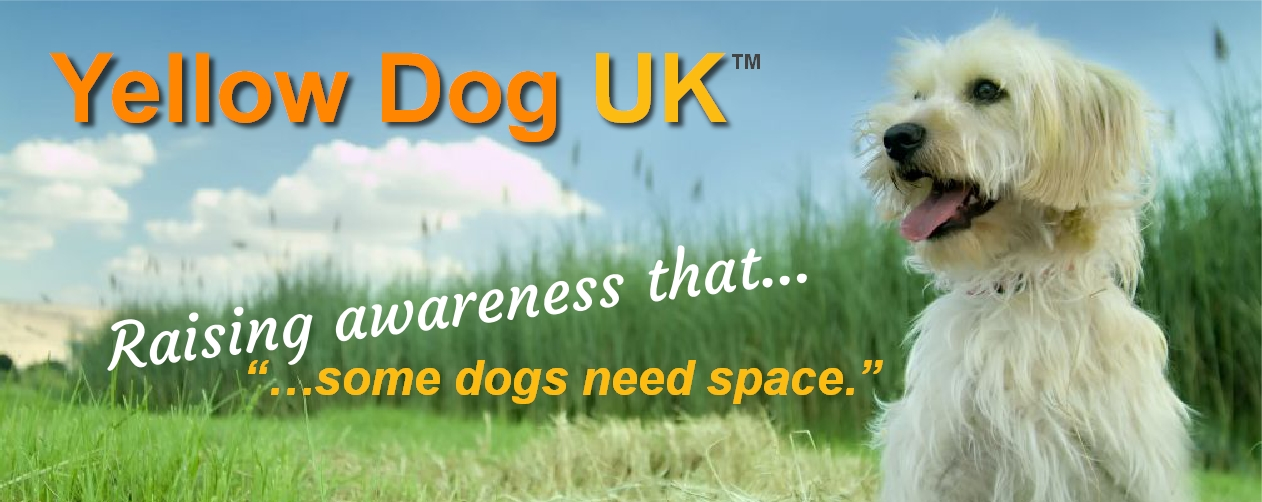 Welcome to Yellow Dog UK