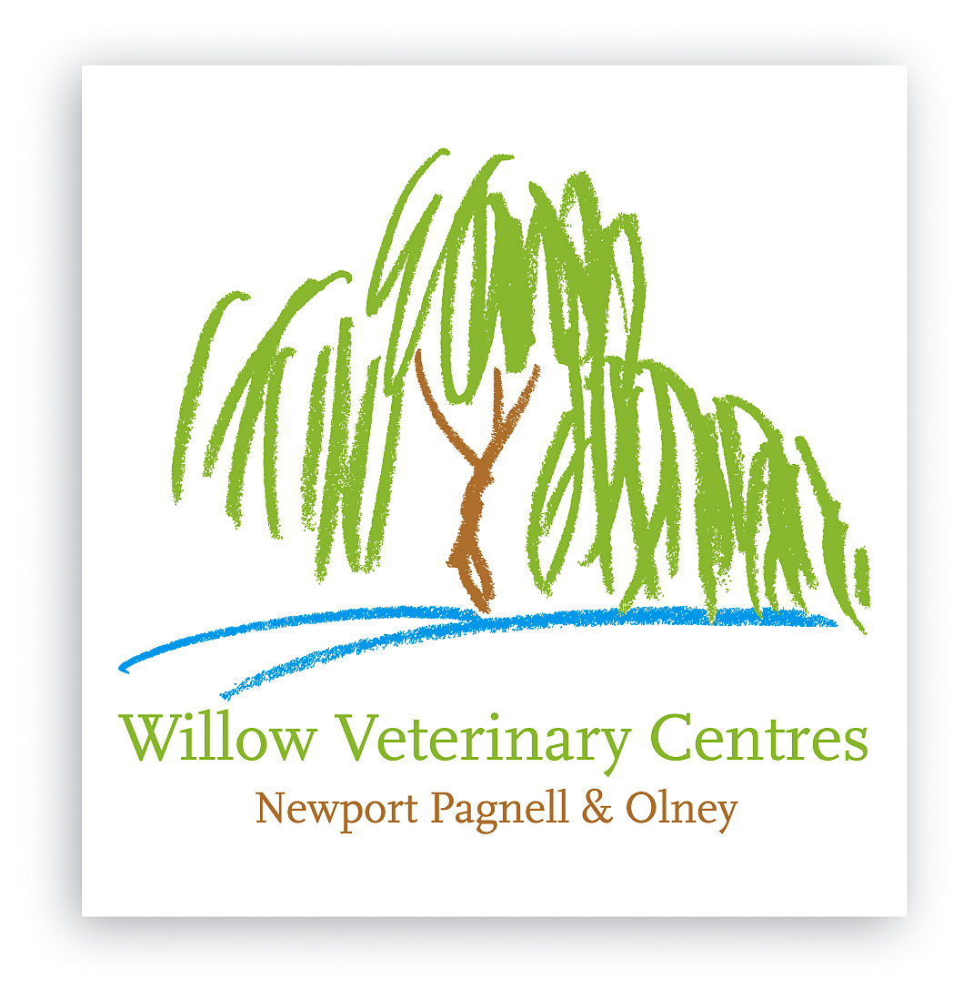 Willow New logo.jpg